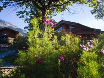 fleurs estivales autour des chalets
