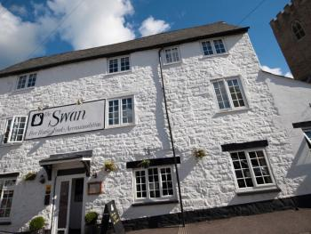 The Swan -