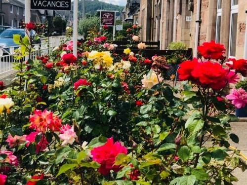 Tanera Bed & Breakfast Rose Garden