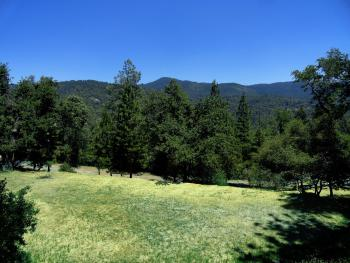 Evergreen Haus - Yosemite Lodging - Mountain View