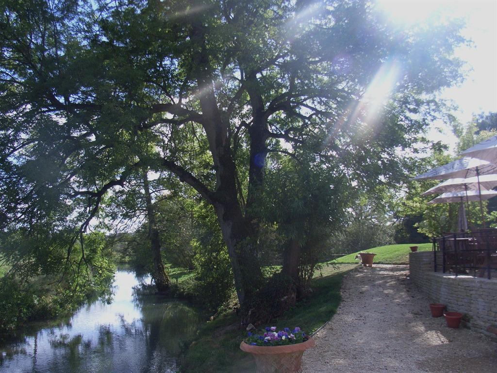 The River Windrush running through our Garden