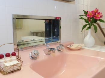 Garden Room Bathroom sink