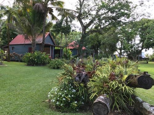 Bejis'art et les bungalow