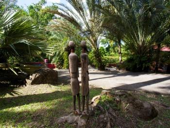 vue du parc et des palmiers