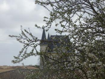 Vue de la fenêtre de l'étage sur le Château Pichon Baron