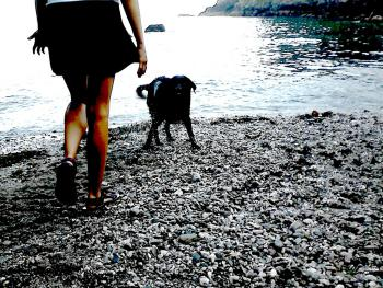 Aga walking Neve on Sugary cove (20min walking distance)