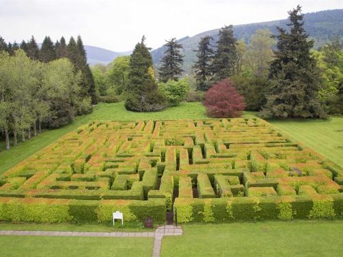 Traquair's Maze