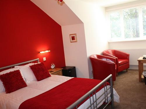 Double room-Ensuite-The Red Room (Ad over 21)