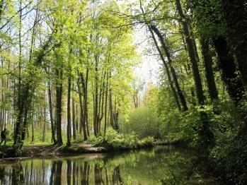 randonnée pédestre sur la vallée de l'Omignon