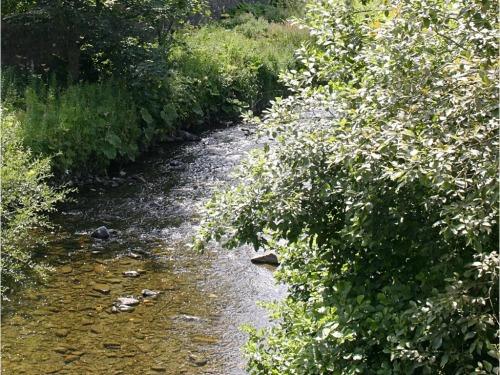 River Slitrig