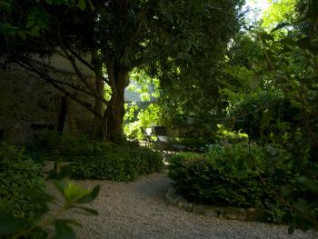 Dans le jardin, à l'ombre de l'if ou du buis centenaires