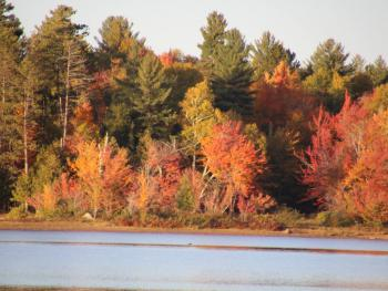 Long Lake in the fall across from Journey's End