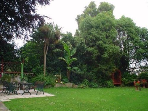 Peaceful Rear Garden