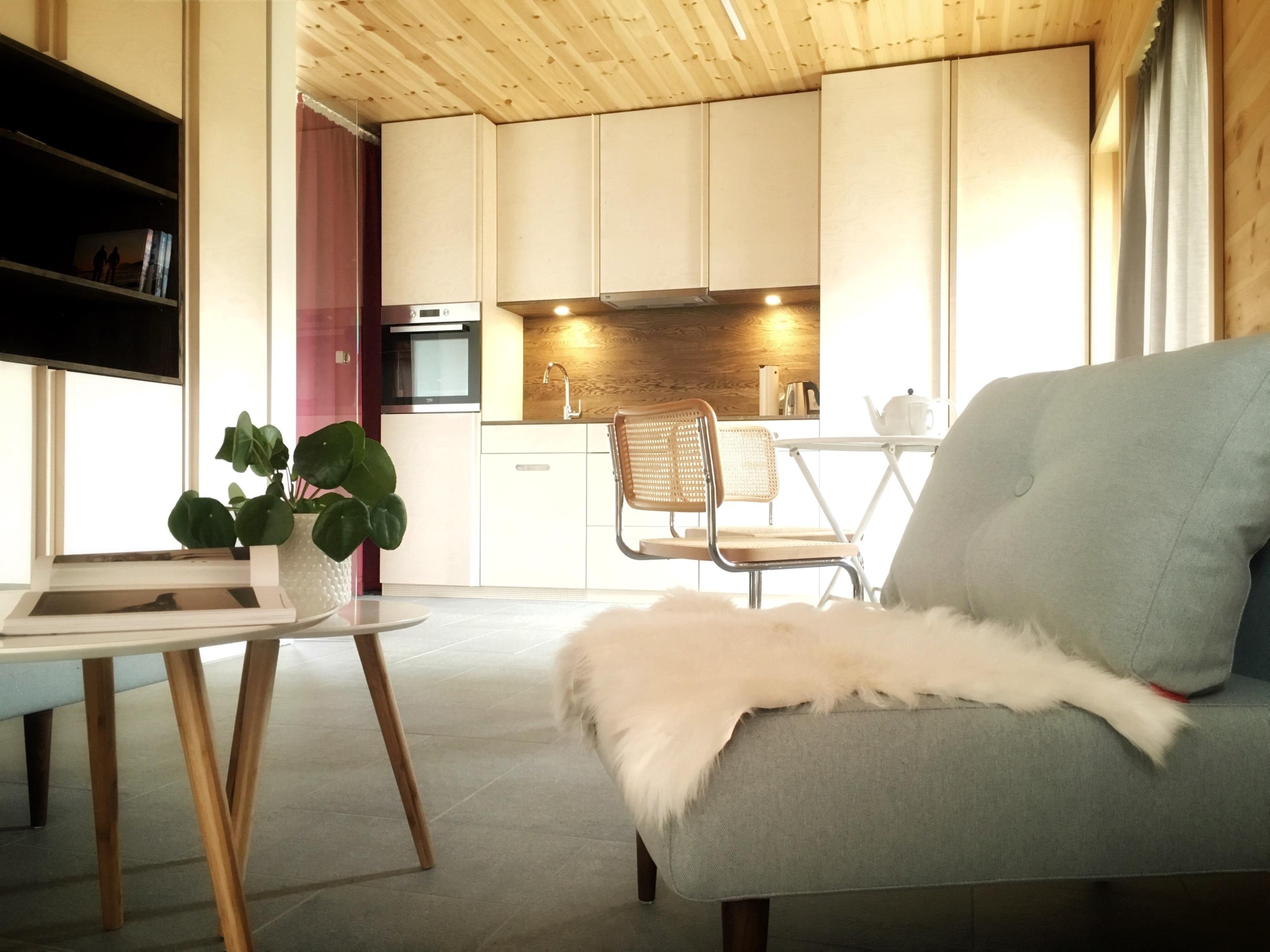 Apartment-Standard-Private Bathroom-Mountain View-Apartment 02