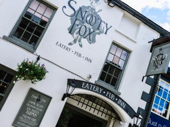 Snooty Fox - Front View