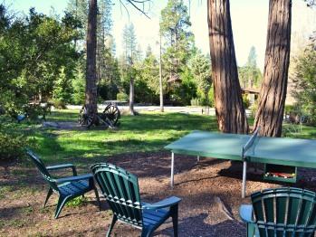 The park area