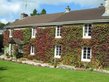 Ivy Cottage -
