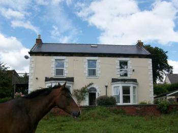 Field House - Front of house overlooking 3 acre field with horses.