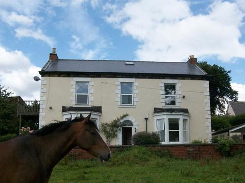 Front of house overlooking 3 acre field with horses.