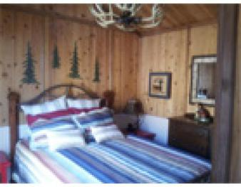 Cabin-Ensuite with Shower-Standard-Lake View-# 1 Shale Lodge Cabin - Cabin-Ensuite with Shower-Standard-Lake View-# 1 Shale Lodge Cabin
