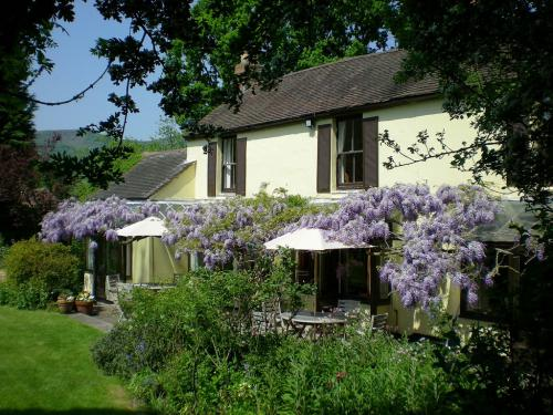 Holdfast Cottage Hotel -