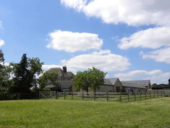 Rear view of Cottages and garden from the fields
